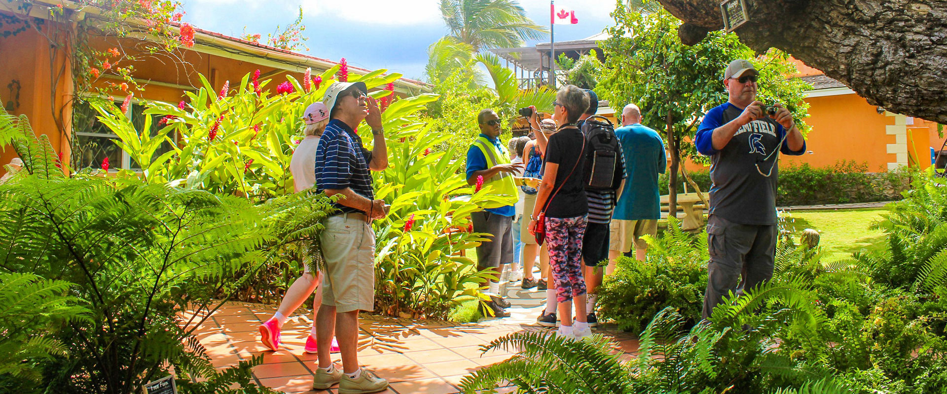 Group on Segway Tour in Historic Basseterre St. Kitts