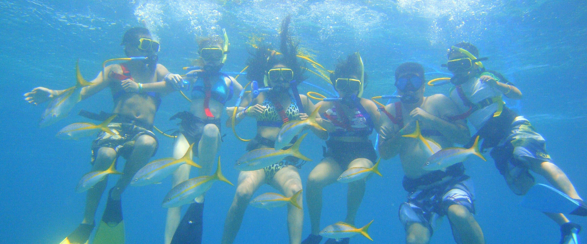 Snorkeling Tour in St. Kitts and Nevis